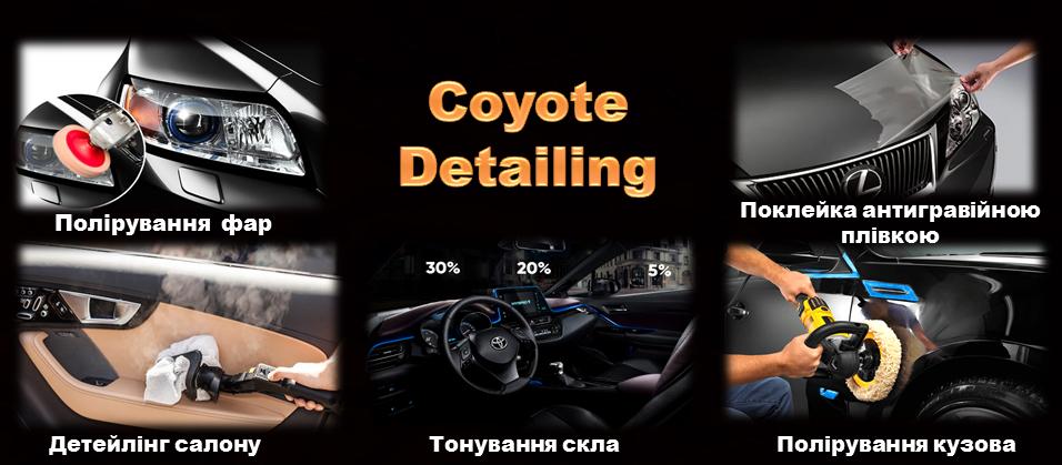 Coyote Detailig